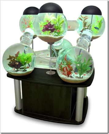 idée déco aquarium gratuit